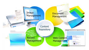 What Should You Know About Content Management Software?